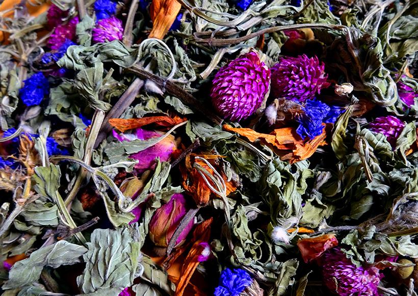 TEA TONIC LIMITED EDITION RANGE